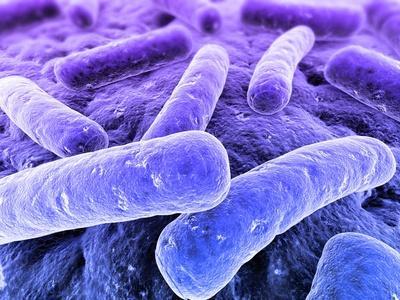 Attenzione alle malattie sessualmente trasmissibili