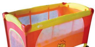 Drive Orange Cat