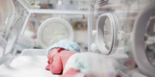 Giornata mondiale del neonato prematuro: 40 mila all'anno