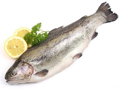 Pesce a 18 mesi