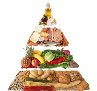 La Piramide Alimentare Quali Nutrienti Per Un Sano Sviluppo Del