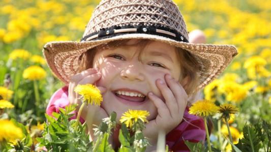 Pollini: un sito per sapere in anticipo dove si trovano