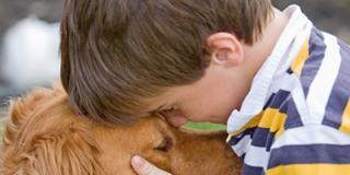 Autismo: sono i cani i migliori dottori!