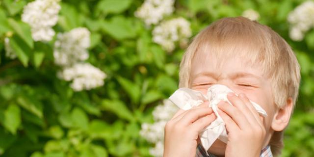 Si allunga la stagione delle allergie nei bambini: i consigli degli esperti