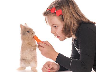 Allergie: in aumento quelle ai roditori