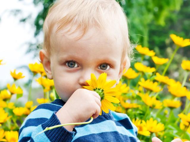 http://static.bimbisaniebelli.it/wp-content/uploads/2013/05/bimbo-allergico-640x480.jpg