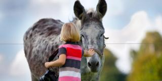 Cavalli e asini possono essere usati per la pet therapy con i bambini