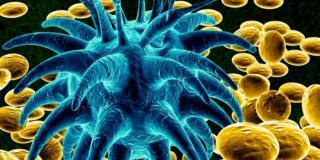 """Malattie bambini: ritornano quelle """"dimenticate"""" e si scoprono nuovi virus"""