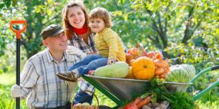 Sai che differenza c'è tra agricoltura biologica, integrata e biodinamica?
