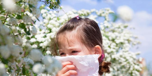 Le allergie non vanno in vacanza, più attenzioni per i bambini