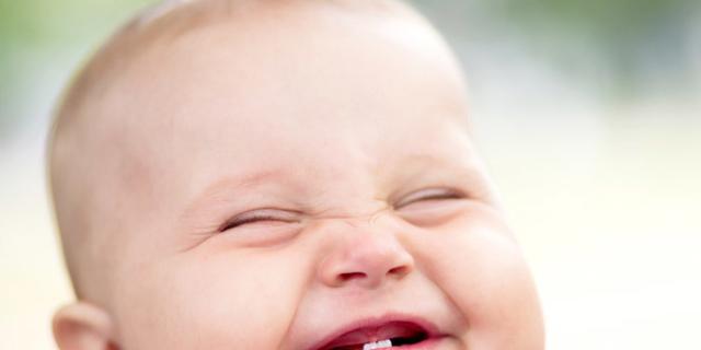 Dai 6 a 12 mesi lo sviluppo del bambino galoppa