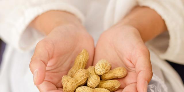 Gravidanza: le noccioline proteggono i bimbi dall'allergia alimentare