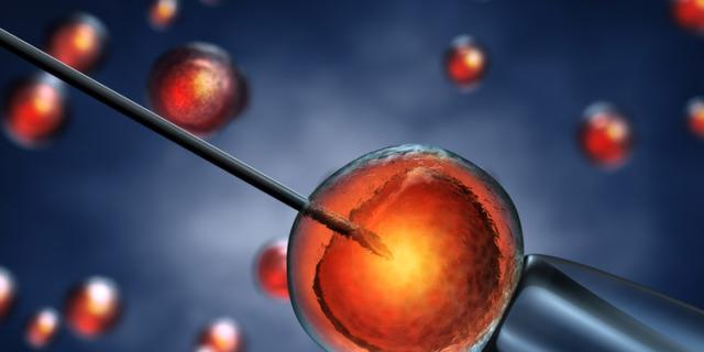 Fecondazione in vitro: più rischio aborto con meno ovuli