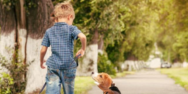 Autismo e pet therapy: un cane come amico!