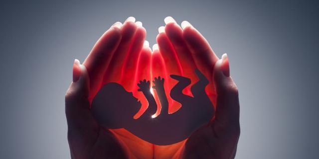 Come si sviluppano i 5 sensi del feto