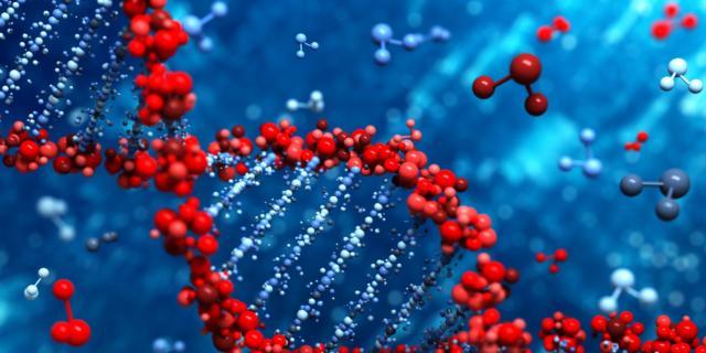 La super-amniocentesi svela l'80% delle malattie genetiche