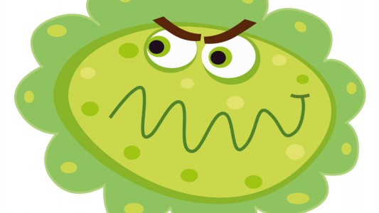 Vaccinazioni raccomandate: Anti Papilloma Virus