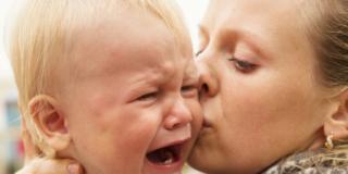 Comportamento del Neonato – 8° mese