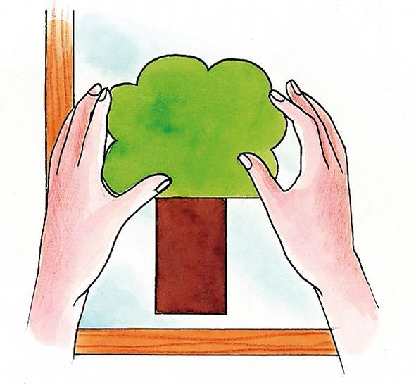 albero carta su vetro