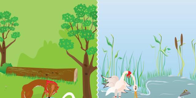 La Volpe e la Cicogna – La Fontaine
