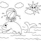 Balena e sole disegno