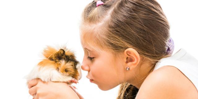 Autismo: le cavie di laboratorio aiutano i bimbi a stare meglio?