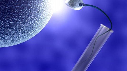 Per l'infertilità maschile, spermatozoi fatti in vitro