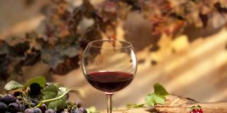 Dimagrisci con i frutti di bosco e il vino rosso