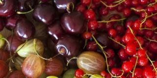 Più salute con i colori della dieta mediterranea