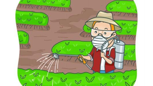 Diabete e pesticidi, la relazione c'è!