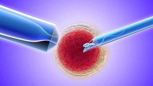 Fivet: più rischi di tumore alle ovaie?