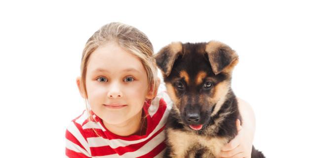 Hai un cane o un gatto di razza? Vinci il suo peluche