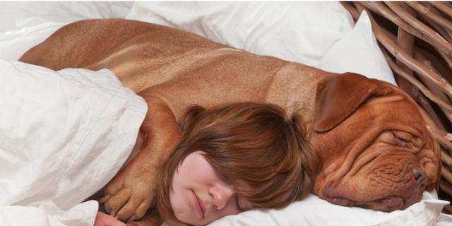 Sonno: migliora se dormi con un animale