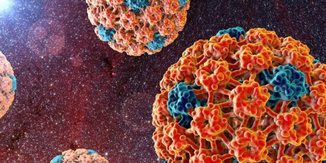 Papillomavirus e sesso orale: più rischi di tumore orofaringeo?