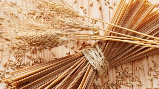 Super-spaghetti: pasta senza sensi di colpa