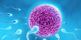Pillola unisex: basta bloccare lo spermatozoo!