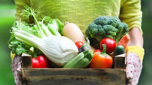 Dna: la dieta vegetariana lo modifica