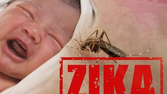 Virus Zika: in gravidanza è davvero pericoloso