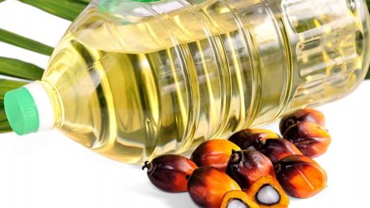 Olio di palma: a rischio per la salute