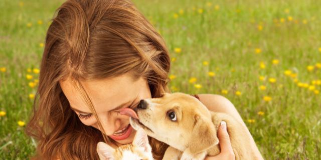Pet therapy contro lo stress