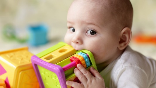 Virus sui giocattoli: rischio infezioni fino a 24 ore