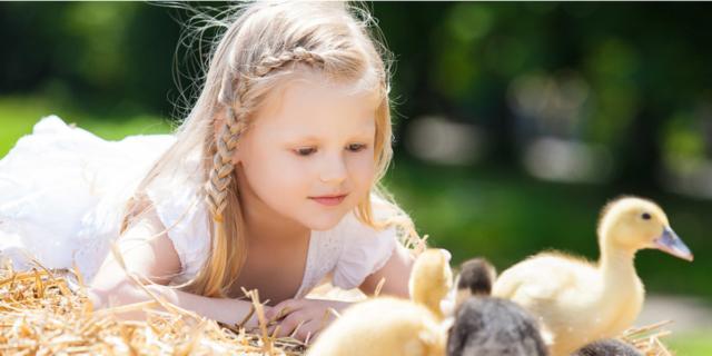 Siena for kids: una città a misura di bambino