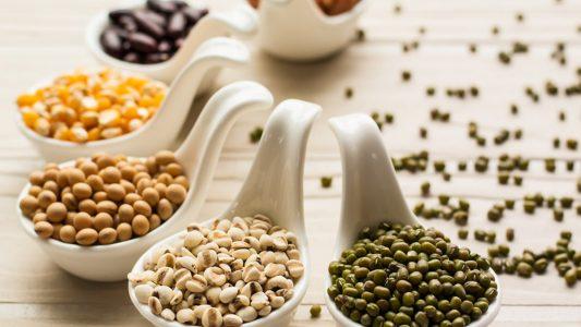 Proteine vegetali, elisir di lunga vita