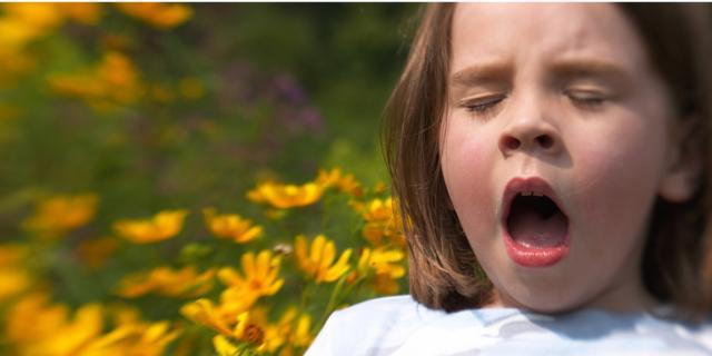 Rinite allergica: la cura resta lunga