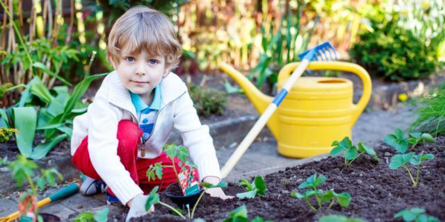 Obesità: si combatte con il giardinaggio