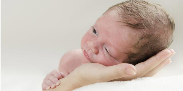Utero artificiale per i neonati prematuri?