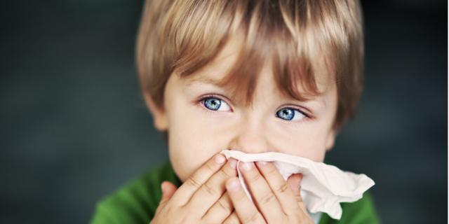 Muffe nel 20-40% delle case: allarme allergie