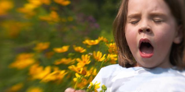 Allergie: nuovo test ne scova 150