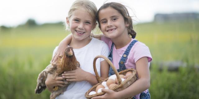 Siena si trasforma in una vecchia fattoria per i bambini