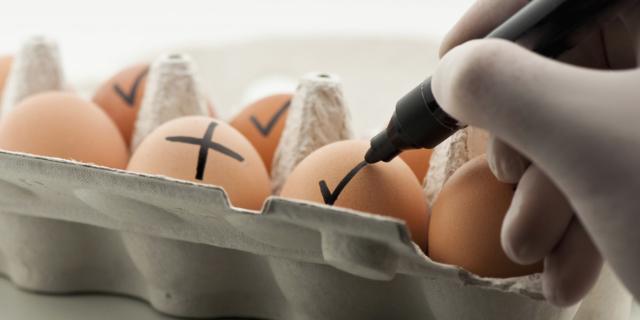 Uova contaminate con il Fipronil: possiamo stare tranquilli?